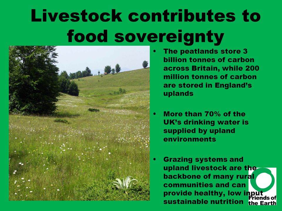 Livestock contributes to food sovereignty The peatlands store 3 billion tonnes of carbon across Britain, while 200 million tonnes of carbon are stored
