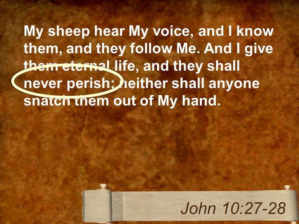 My sheep hear My voice, and I know them, and they follow Me.