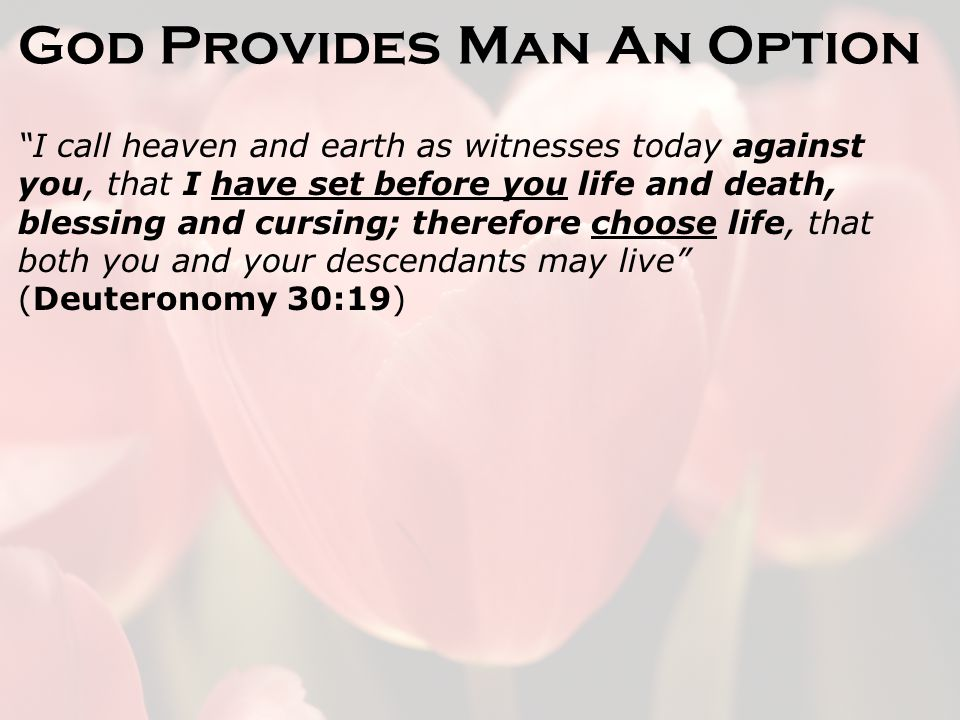 God Provides Man An Option I call heaven and earth as witnesses today against you, that I have set before you life and death, blessing and cursing; therefore choose life, that both you and your descendants may live (Deuteronomy 30:19)