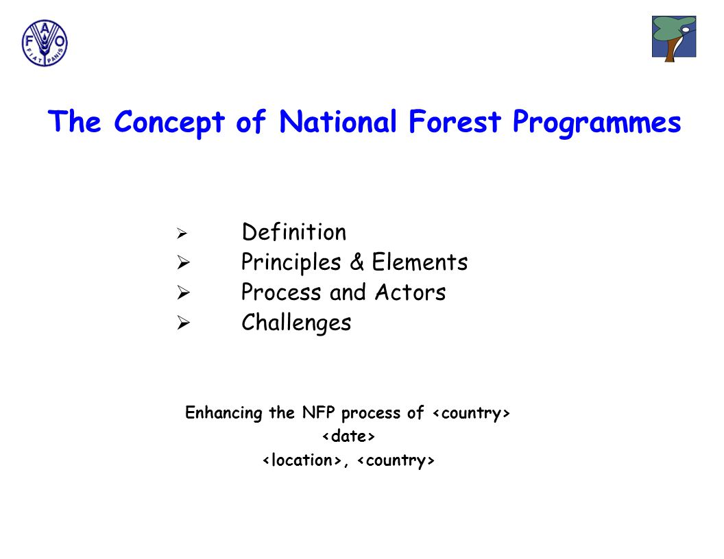 The Concept of National Forest Programmes Enhancing the NFP process of,  Definition  Principles & Elements  Process and Actors  Challenges