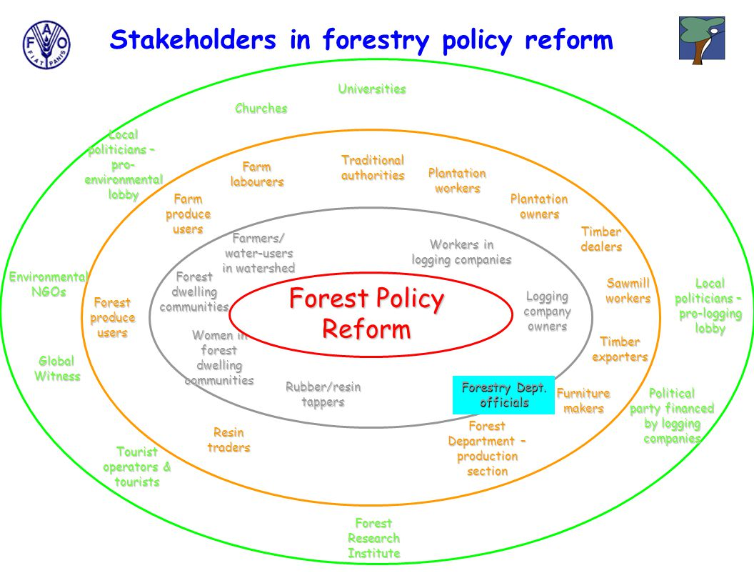 Stakeholders in forestry policy reform Forestry Dept.