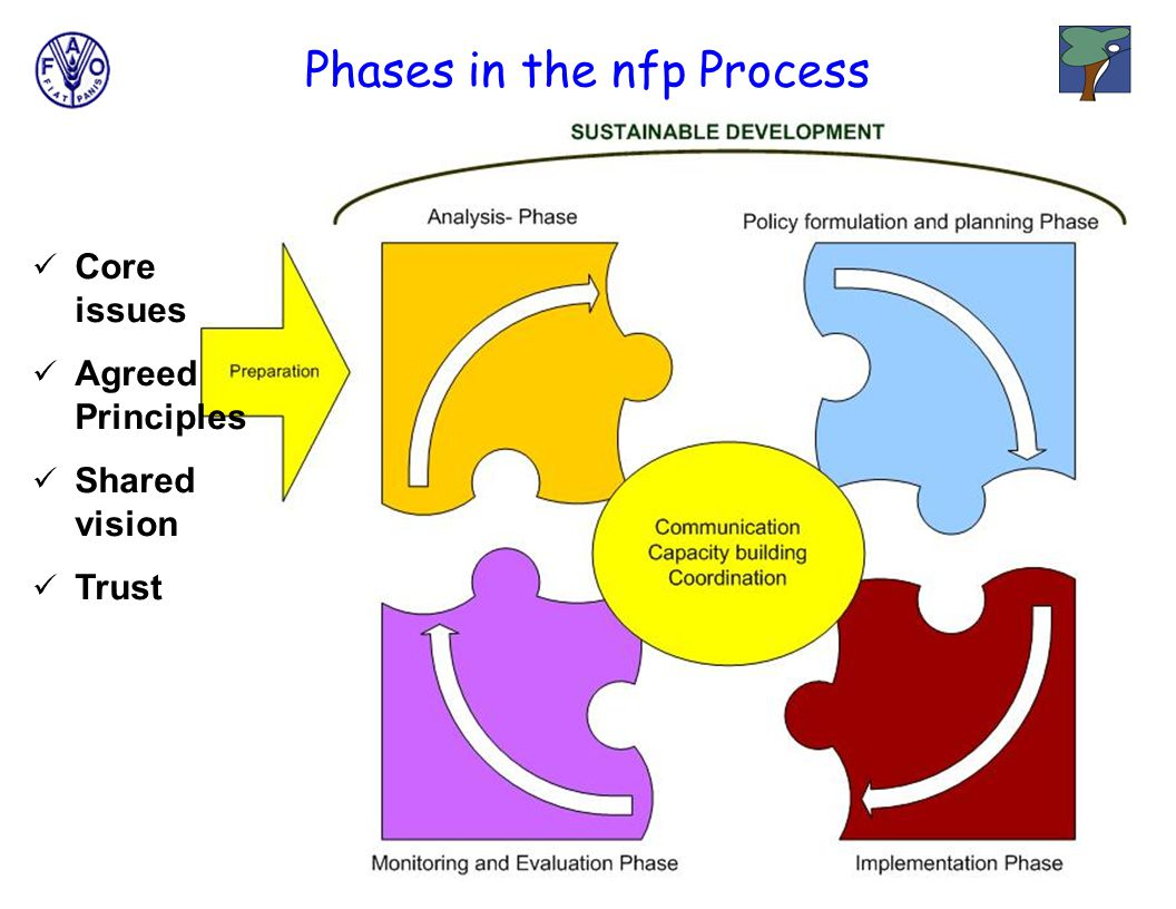Core issues Agreed Principles Shared vision Trust Phases in the nfp Process