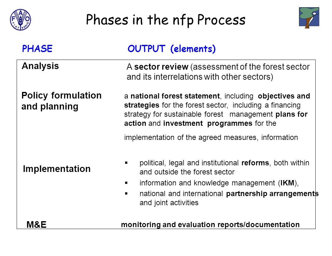 PHASEOUTPUT (elements) Analysis A sector review (assessment of the forest sector and its interrelations with other sectors) Policy formulation and planning a national forest statement, including objectives and strategies for the forest sector, including a financing strategy for sustainable forest management plans for action and investment programmes for the implementation of the agreed measures, information Implementation  political, legal and institutional reforms, both within and outside the forest sector  information and knowledge management (IKM),  national and international partnership arrangements and joint activities M&E monitoring and evaluation reports/documentation Phases in the nfp Process