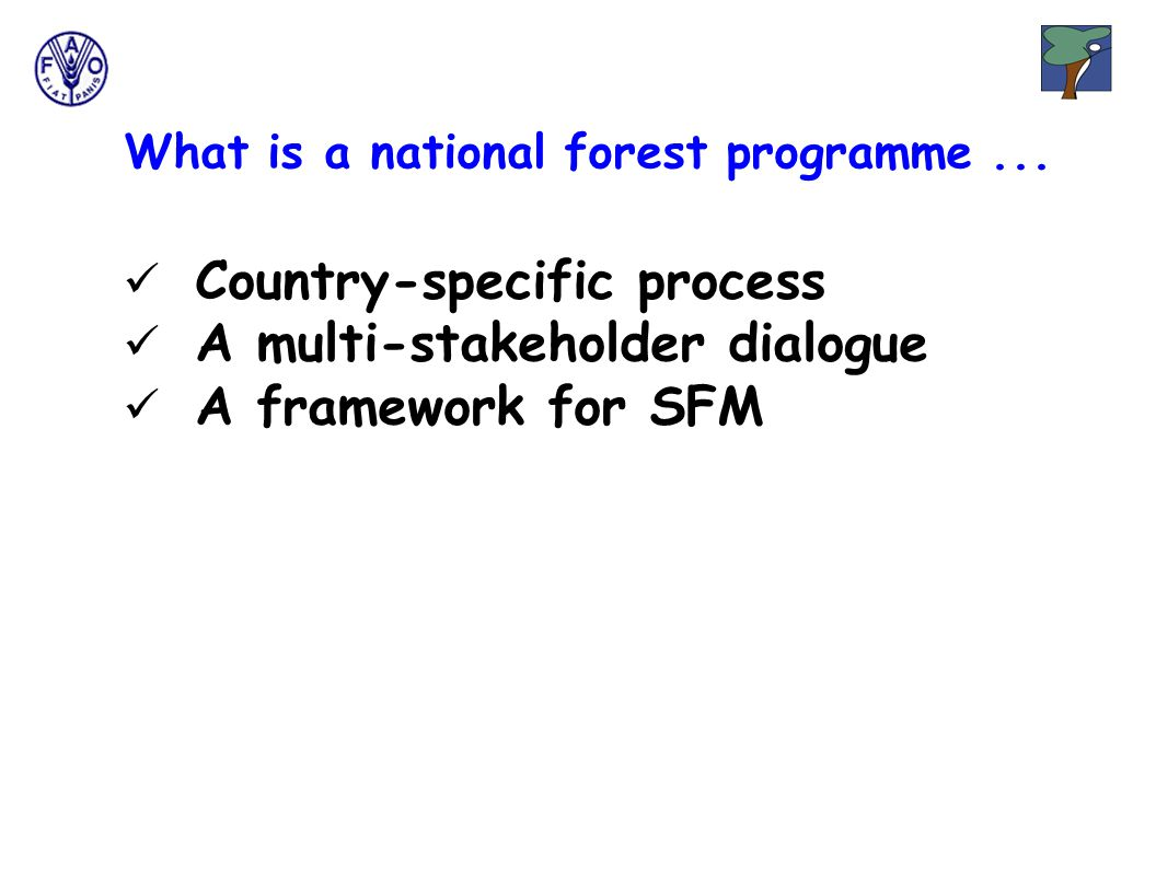 What is a national forest programme...