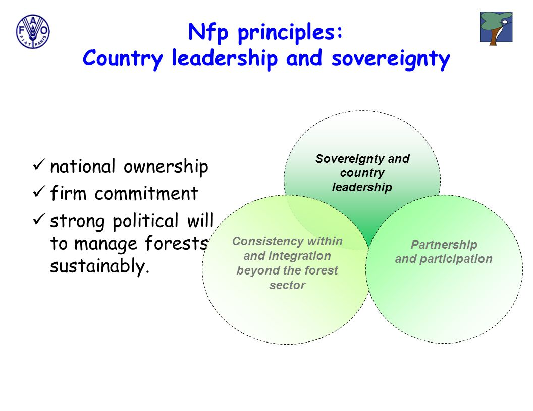 Nfp principles: Country leadership and sovereignty national ownership firm commitment strong political will to manage forests sustainably.