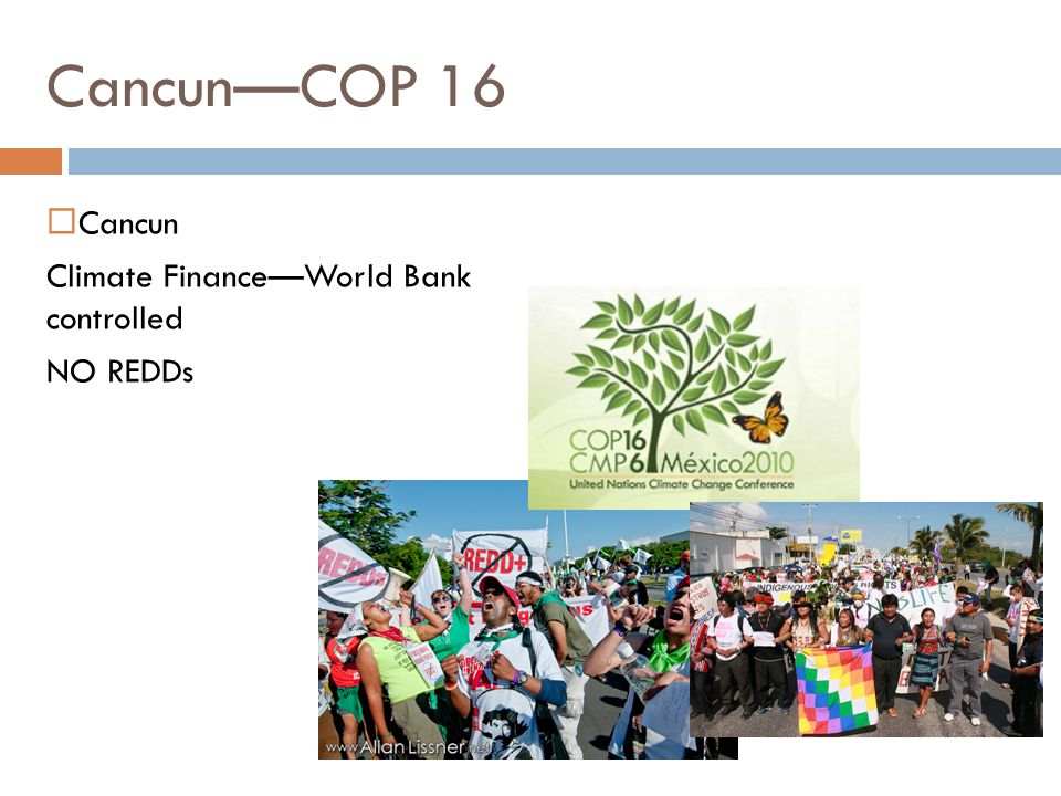  Cancun Climate Finance—World Bank controlled NO REDDs Cancun—COP 16