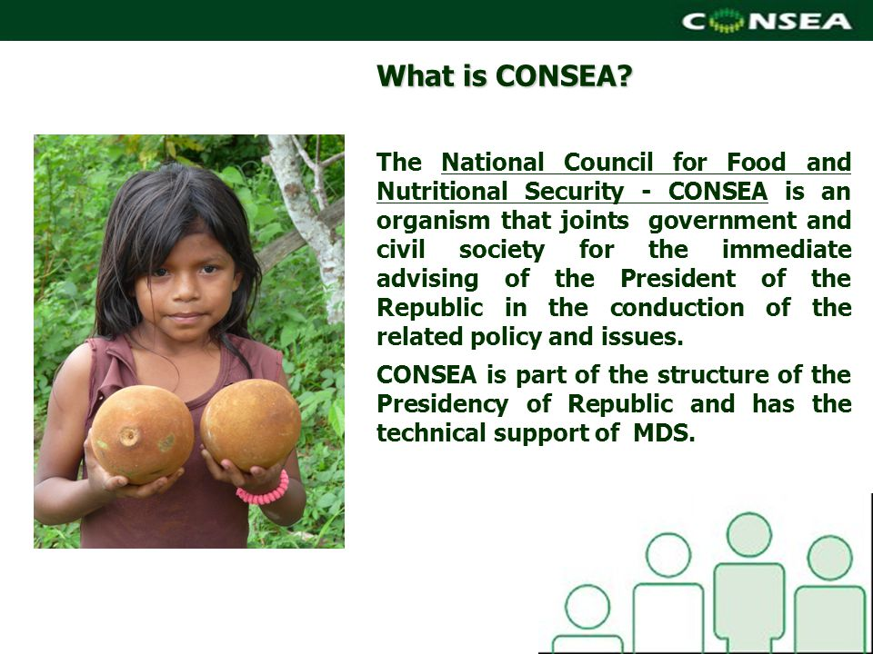 What is CONSEA.