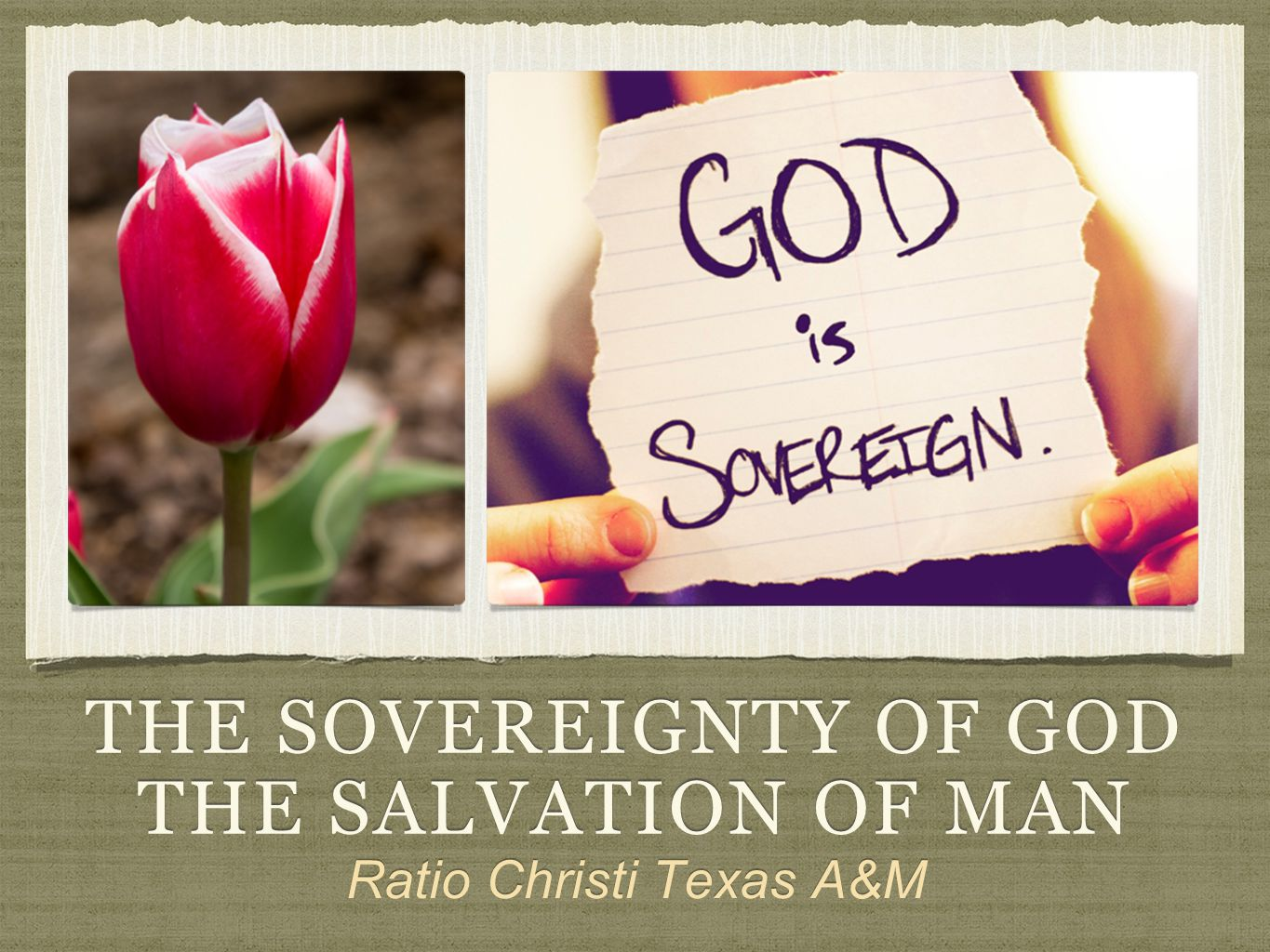THE SOVEREIGNTY OF GOD THE SALVATION OF MAN Ratio Christi Texas A&M