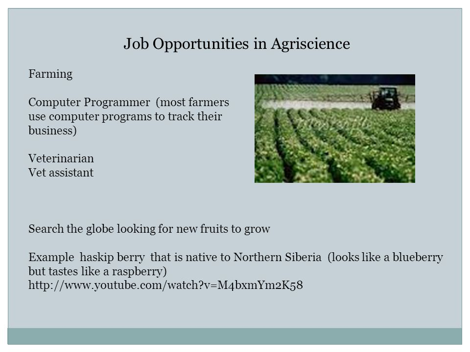 Job Opportunities in Agriscience Farming Computer Programmer (most farmers use computer programs to track their business) Veterinarian Vet assistant S