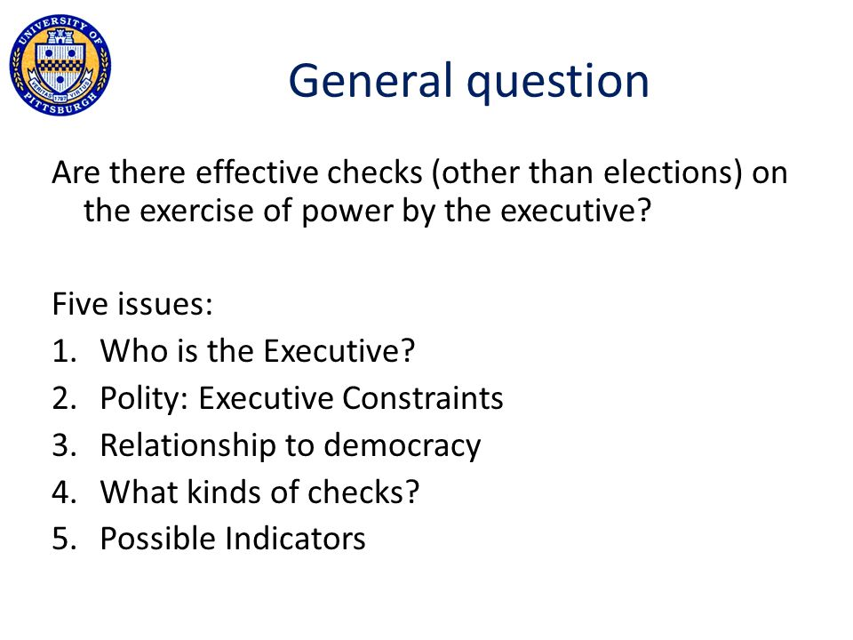 General question Are there effective checks (other than elections) on the exercise of power by the executive.