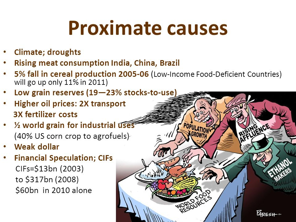 Proximate causes Climate; droughts Rising meat consumption India, China, Brazil 5% fall in cereal production 2005-06 ( Low-Income Food-Deficient Countries) will go up only 11% in 2011) Low grain reserves (19—23% stocks-to-use) Higher oil prices: 2X transport 3X fertilizer costs ½ world grain for industrial uses (40% US corn crop to agrofuels) Weak dollar Financial Speculation; CIFs CIFs=$13bn (2003) to $317bn (2008) $60bn in 2010 alone
