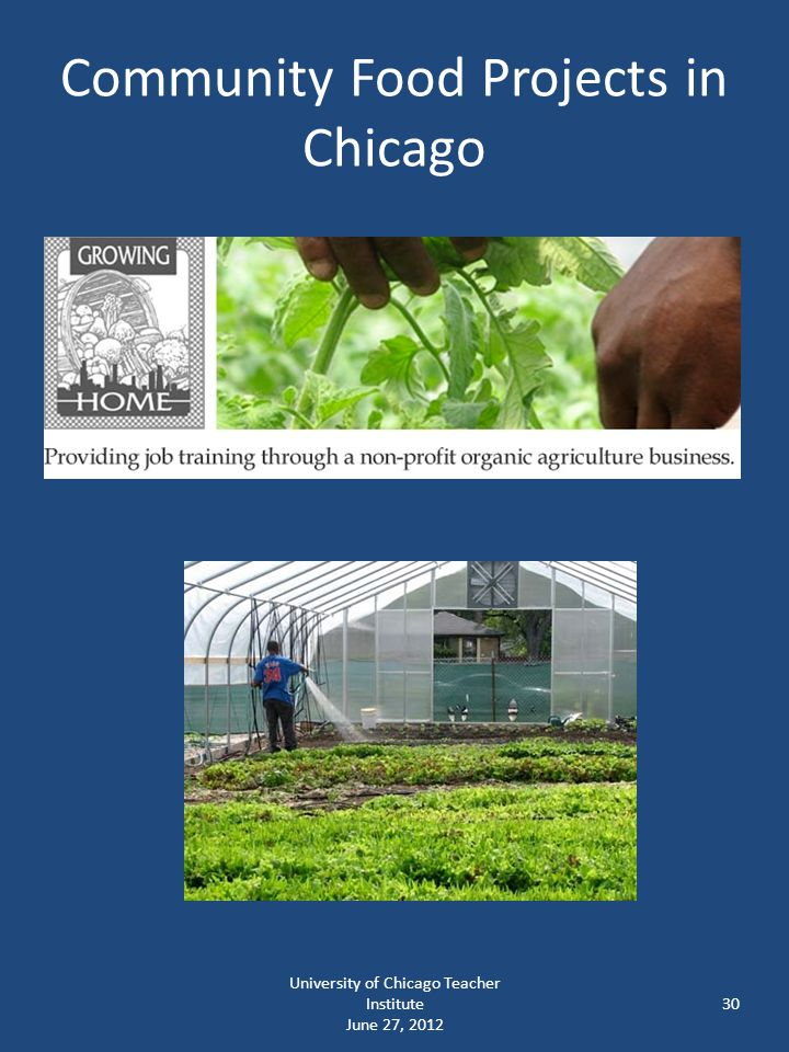 Community Food Projects in Chicago University of Chicago Teacher Institute June 27, 2012 30