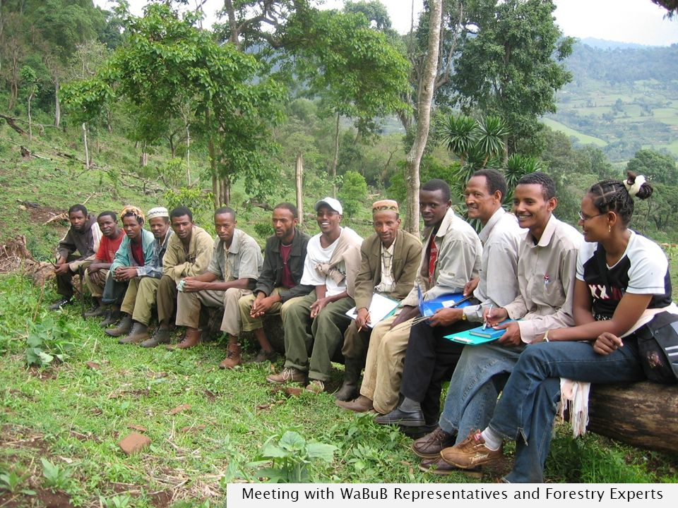 Meeting with WaBuB Representatives and Forestry Experts