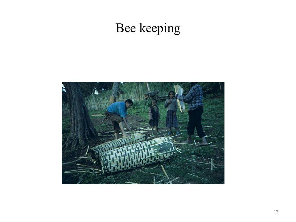 17 Bee keeping