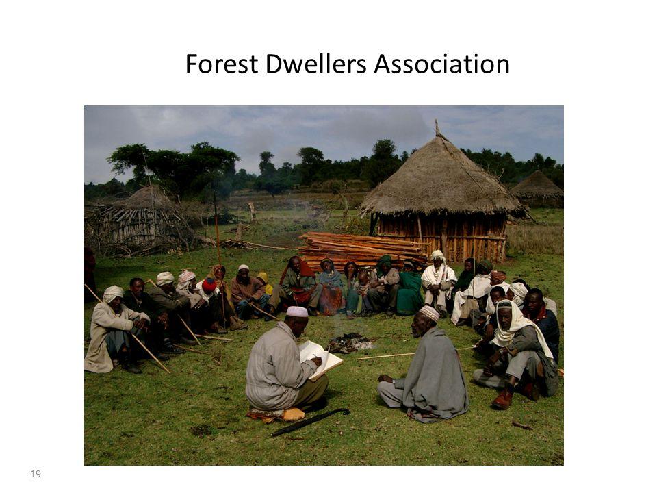 19 Forest Dwellers Association
