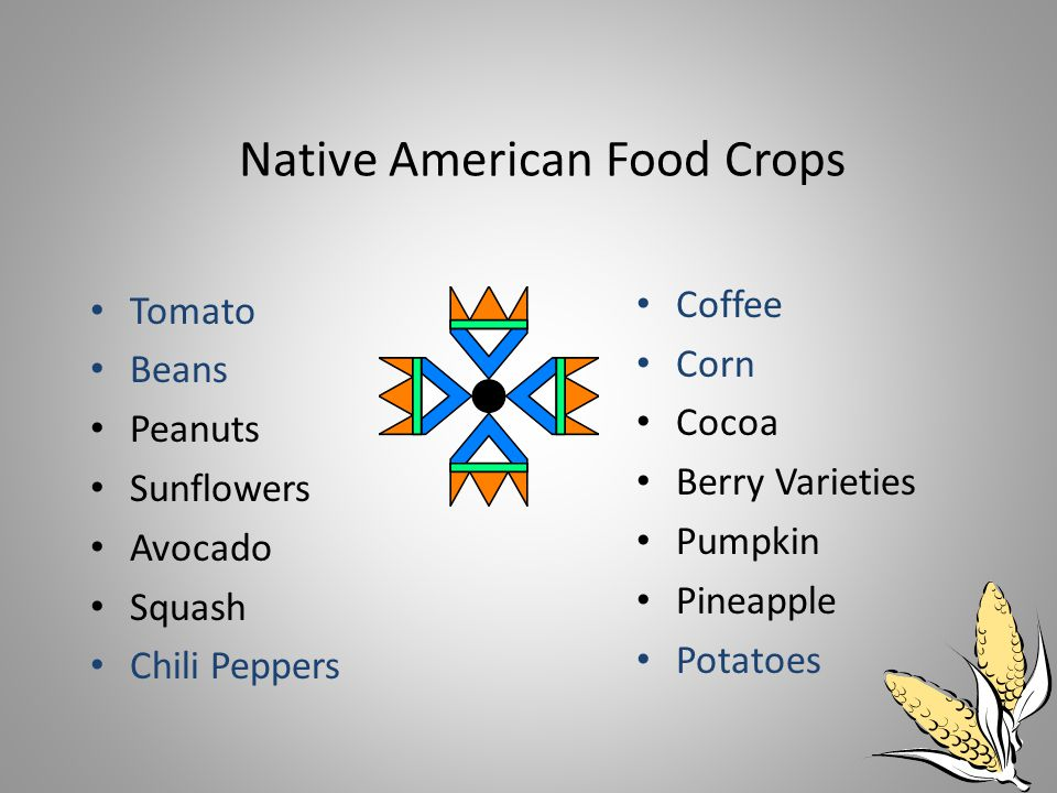 Native American Food Crops Tomato Beans Peanuts Sunflowers Avocado Squash Chili Peppers Coffee Corn Cocoa Berry Varieties Pumpkin Pineapple Potatoes