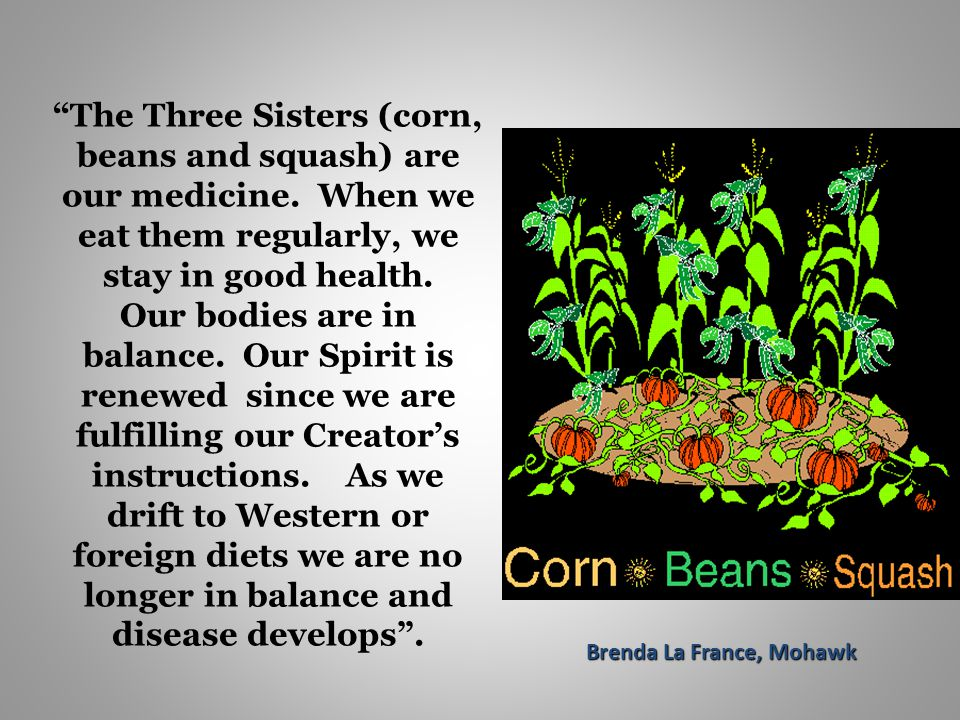 The Three Sisters (corn, beans and squash) are our medicine.