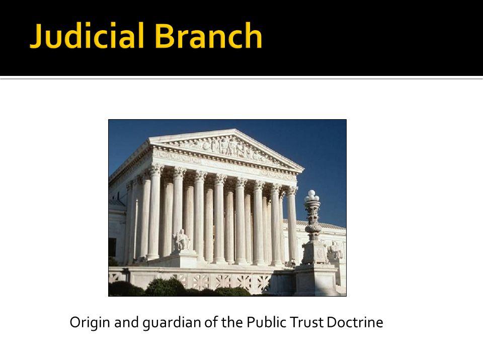 Origin and guardian of the Public Trust Doctrine