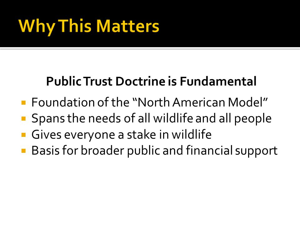 Public Trust Doctrine is Fundamental  Foundation of the North American Model  Spans the needs of all wildlife and all people  Gives everyone a stake in wildlife  Basis for broader public and financial support