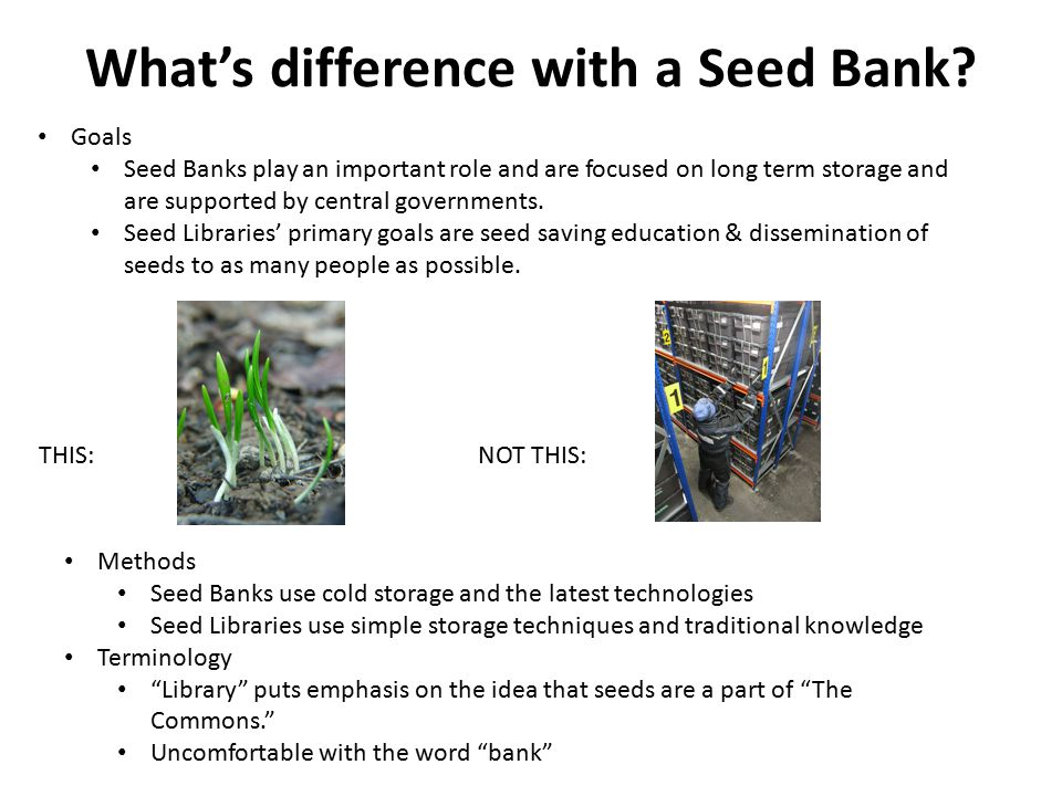 What's difference with a Seed Bank.
