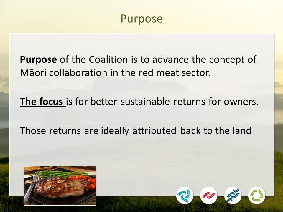 Purpose Purpose of the Coalition is to advance the concept of Māori collaboration in the red meat sector.