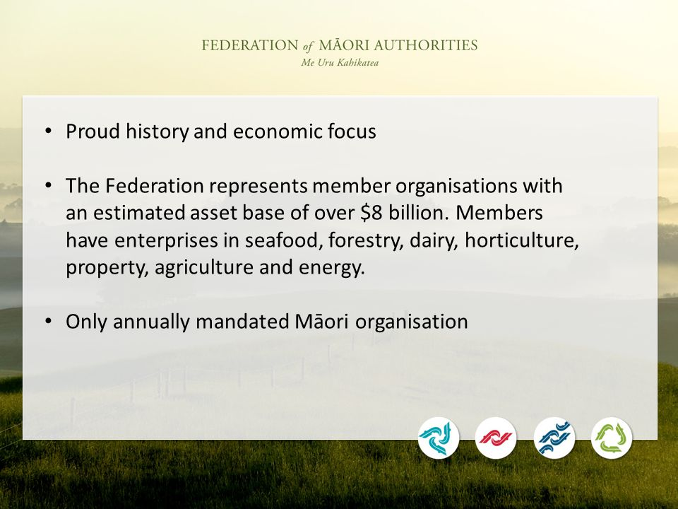 Proud history and economic focus The Federation represents member organisations with an estimated asset base of over $8 billion.