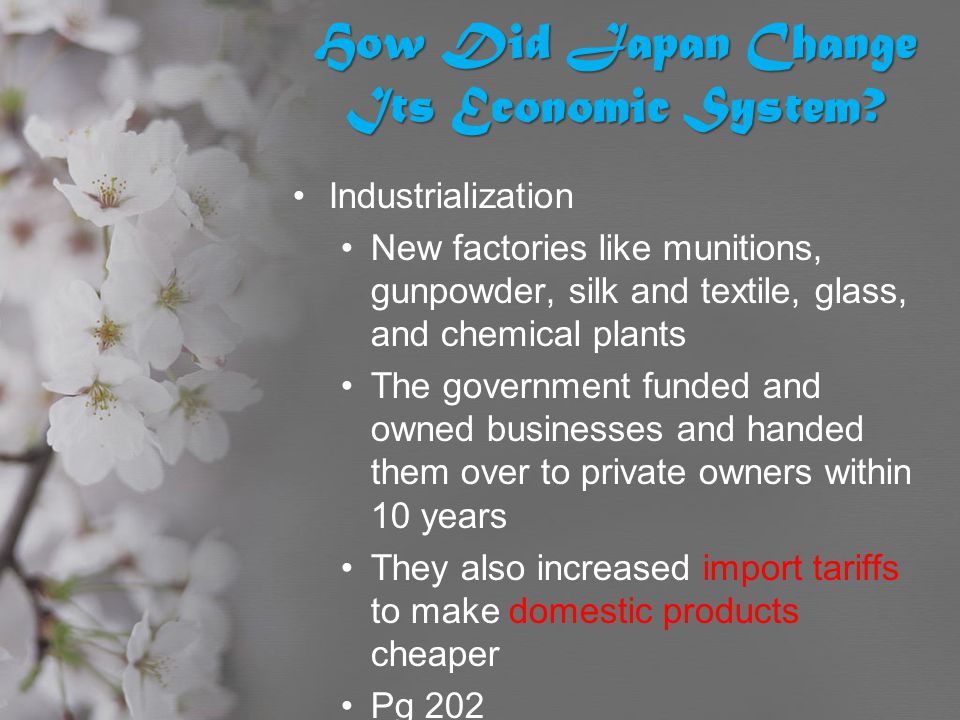 How Did Japan Change Its Economic System? Industrialization New factories like munitions, gunpowder, silk and textile, glass, and chemical plants The