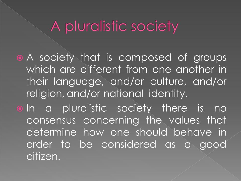  A society that is composed of groups which are different from one another in their language, and/or culture, and/or religion, and/or national identi