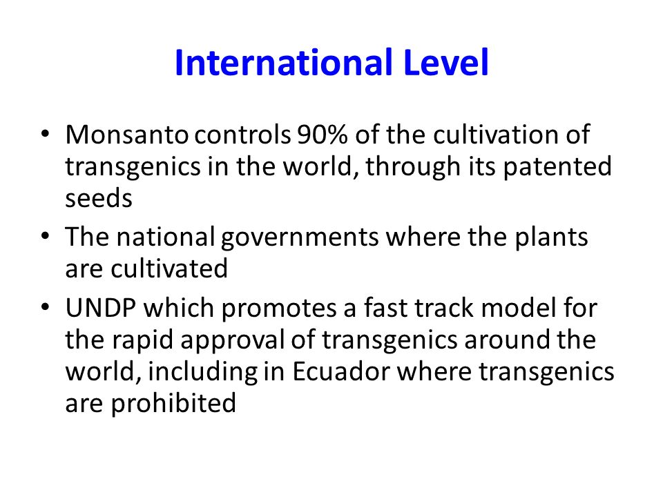 International Level Monsanto controls 90% of the cultivation of transgenics in the world, through its patented seeds The national governments where th