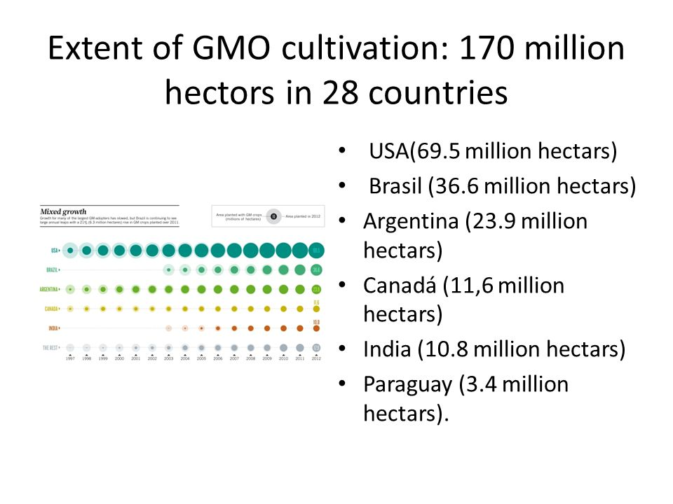 Extent of GMO cultivation: 170 million hectors in 28 countries USA(69.5 million hectars) Brasil (36.6 million hectars) Argentina (23.9 million hectars