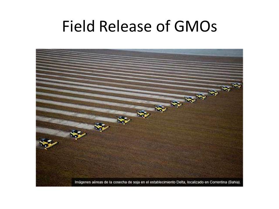 Field Release of GMOs