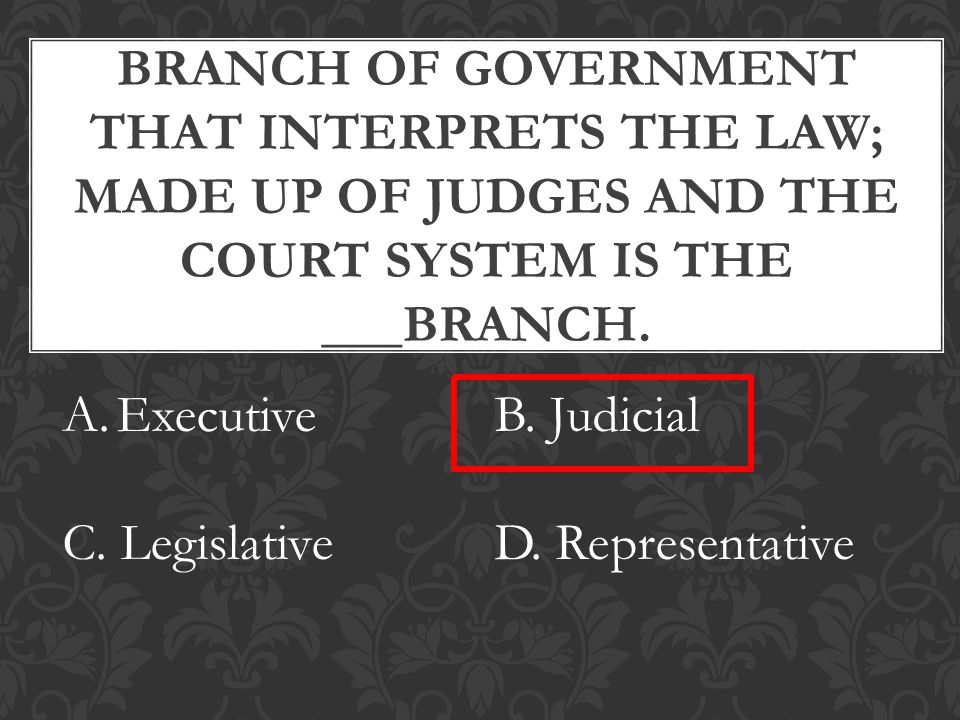 BRANCH OF GOVERNMENT THAT INTERPRETS THE LAW; MADE UP OF JUDGES AND THE COURT SYSTEM IS THE ___BRANCH.