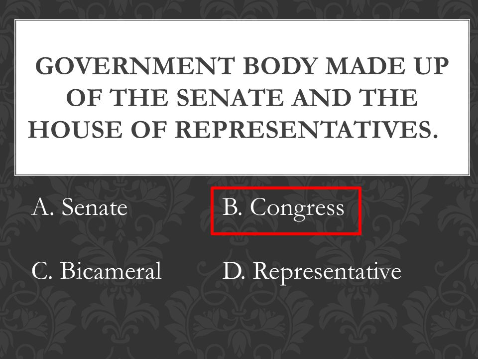GOVERNMENT BODY MADE UP OF THE SENATE AND THE HOUSE OF REPRESENTATIVES.