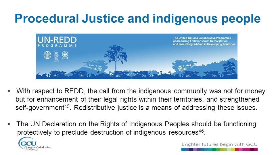 Procedural Justice and indigenous people With respect to REDD, the call from the indigenous community was not for money but for enhancement of their l