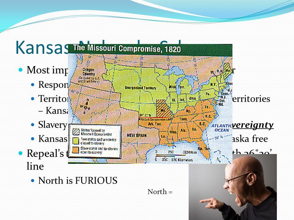 Kansas-Nebraska Scheme Most important short-term cause of Civil War Response to Gadsden Purchase Territory of Nebraska would be split into two territo