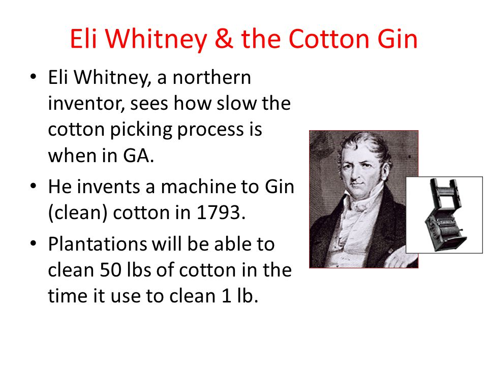 Eli Whitney & the Cotton Gin Eli Whitney, a northern inventor, sees how slow the cotton picking process is when in GA.