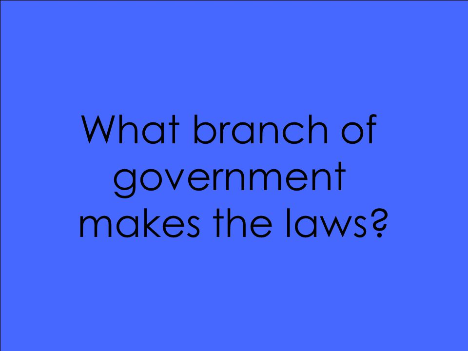 What branch of government makes the laws?