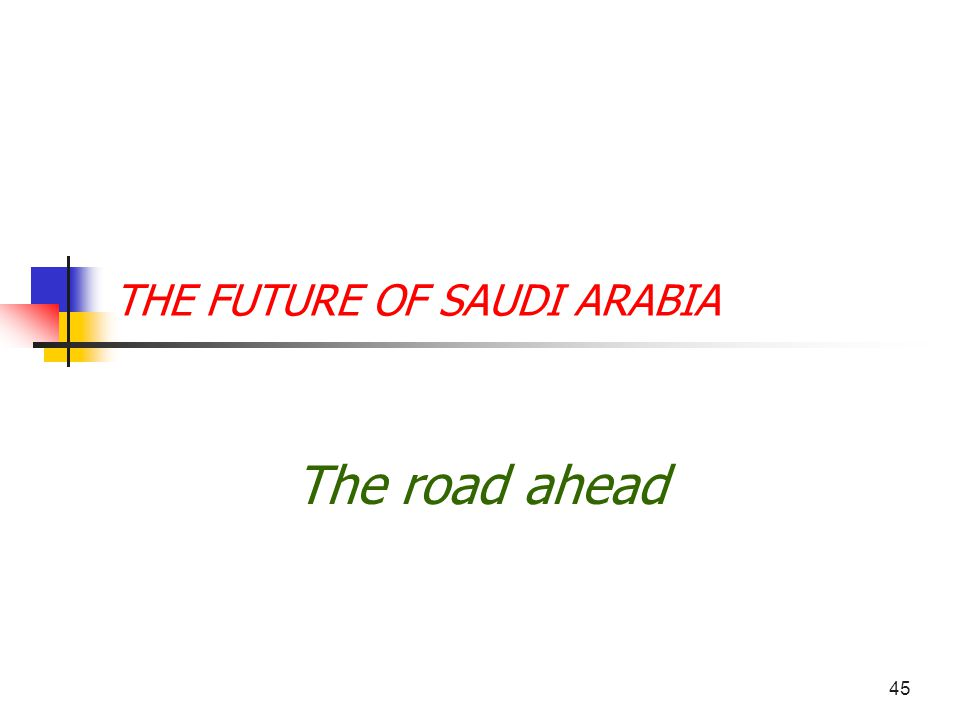 45 THE FUTURE OF SAUDI ARABIA The road ahead