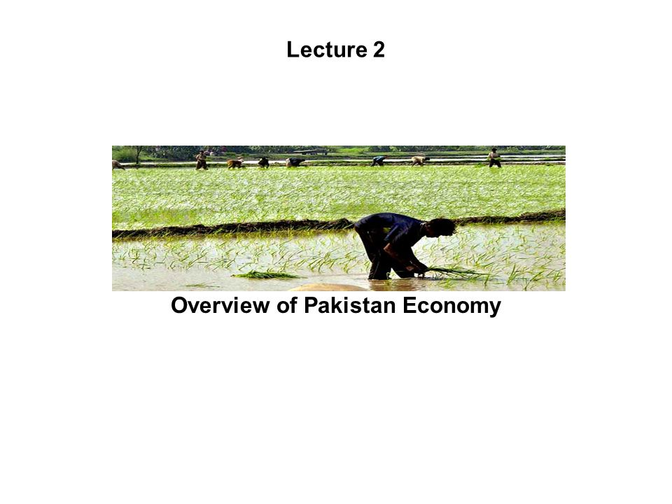 Lecture 2 Overview of Pakistan Economy