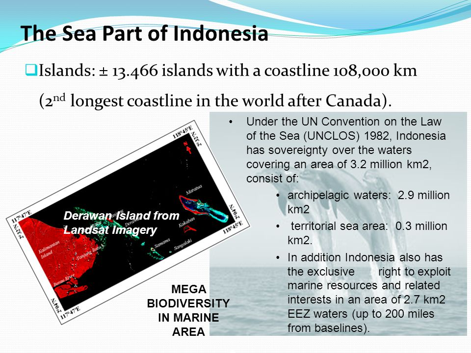 The Sea Part of Indonesia  Islands: ± 13.466 islands with a coastline 108,000 km (2 nd longest coastline in the world after Canada).
