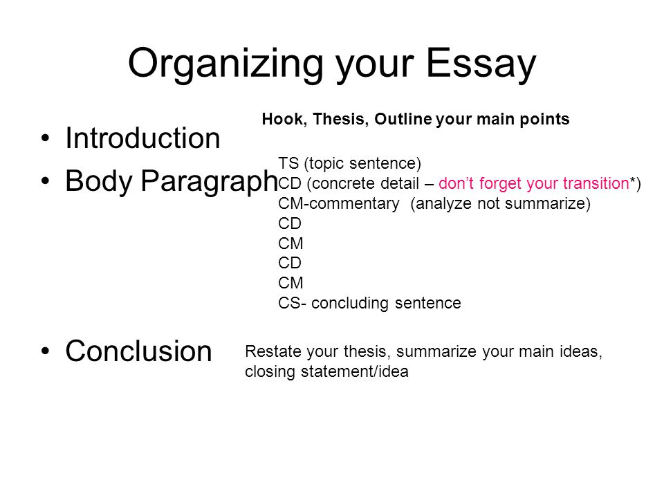 Essay Introduction Body Conclusion