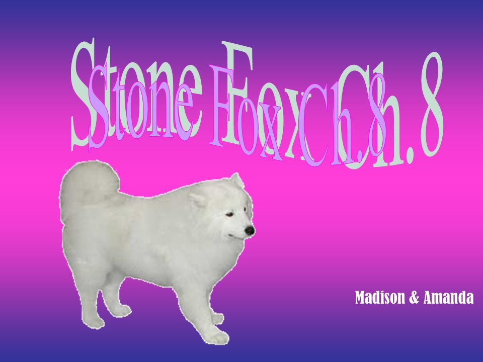 Summary Little Willy went to see Stone Fox. He left after he got medicine from Doc Smith.