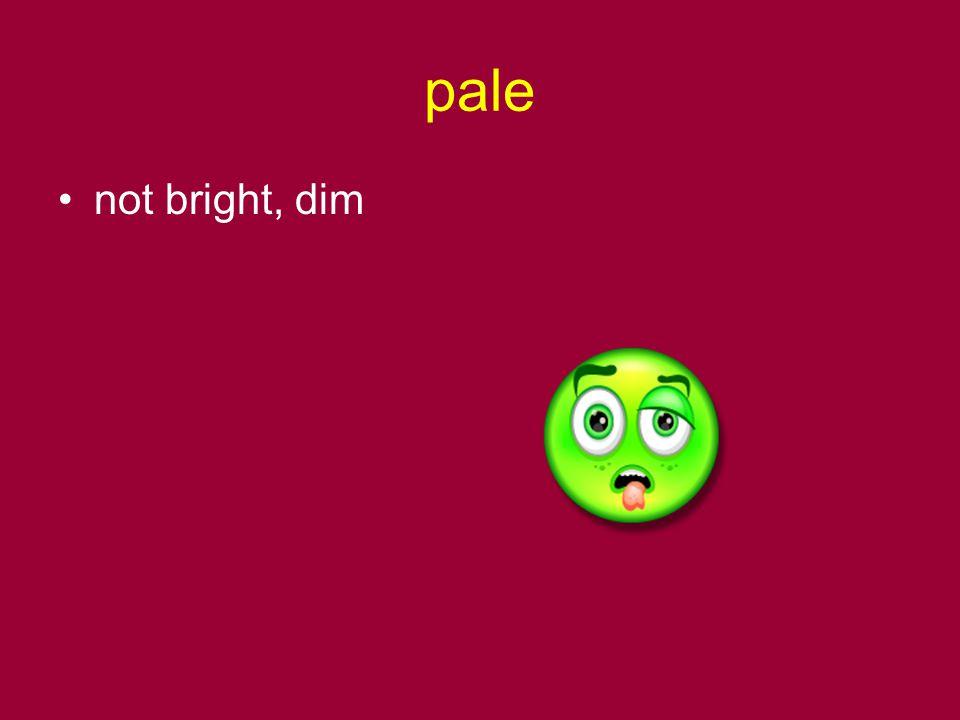 pale not bright, dim