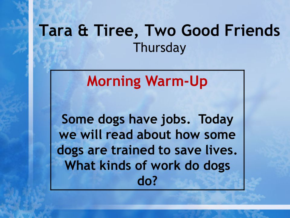 Tara & Tiree, Two Good Friends Thursday Morning Warm-Up Some dogs have jobs. Today we will read about how some dogs are trained to save lives. What ki