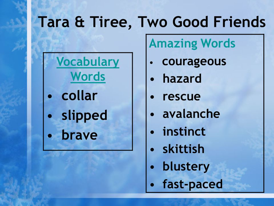 Tara & Tiree, Two Good Friends Vocabulary Words collar slipped brave Amazing Words courageous hazard rescue avalanche instinct skittish blustery fast-