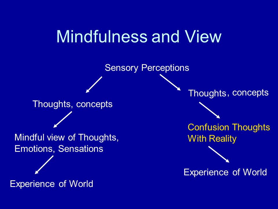 Mindfulness and View Sensory Perceptions Thoughts Mindful view of Thoughts, Emotions, Sensations Confusion Thoughts With Reality Experience of World, concepts Thoughts, concepts