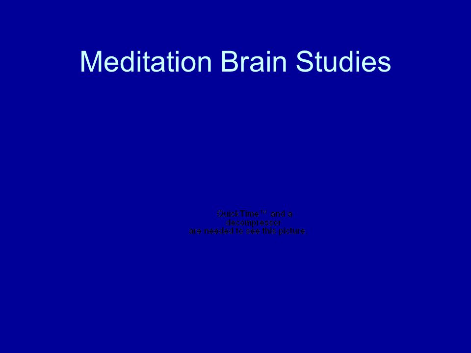 Meditation Brain Studies