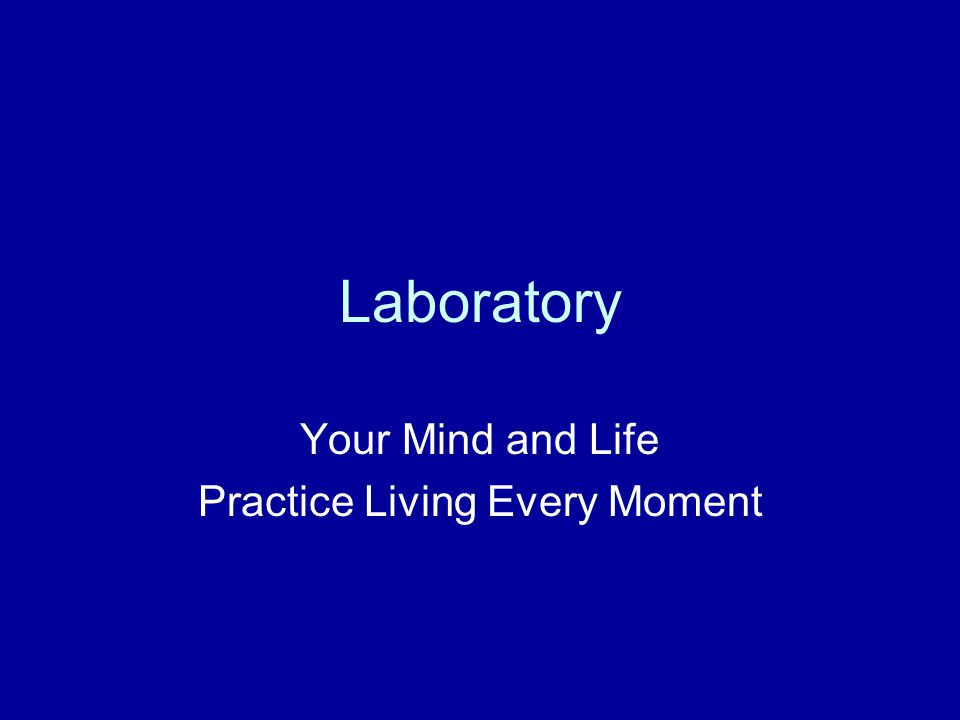 Laboratory Your Mind and Life Practice Living Every Moment