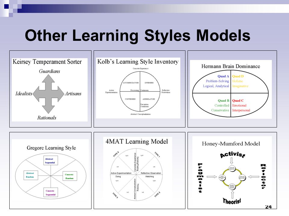 24 Other Learning Styles Models
