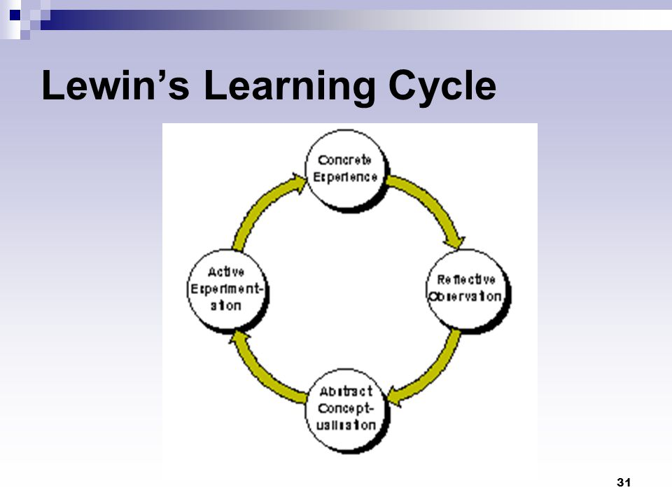 31 Lewin's Learning Cycle